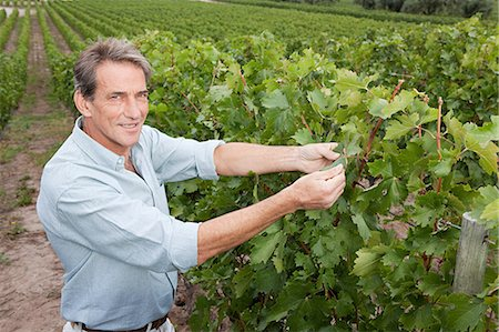 people in argentina - Mature man in a vineyard Stock Photo - Premium Royalty-Free, Code: 6114-06598524