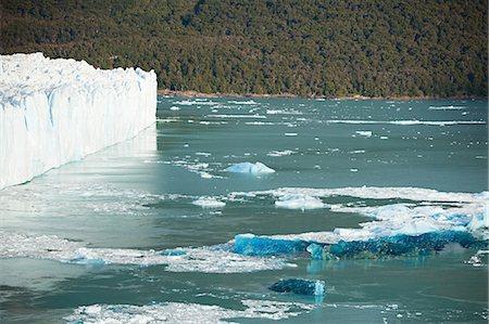 perito moreno glacier - Perito moreno glacier in southern argentina Stock Photo - Premium Royalty-Free, Code: 6114-06599024