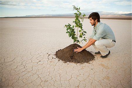 Man planting plant in desert landscape Stock Photo - Premium Royalty-Free, Code: 6114-06599026