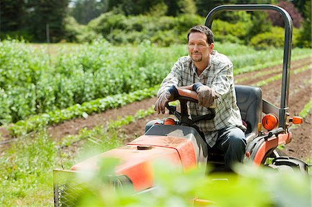 riding crop - Farmer on tractor in field Stock Photo - Premium Royalty-Free, Code: 6114-06599867