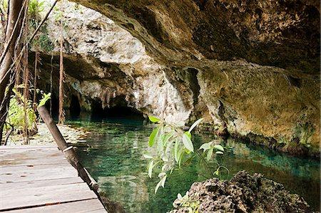 exotic outdoors - Grande Cenote, Quintana Roo, Tulum, Mexico Stock Photo - Premium Royalty-Free, Code: 6114-06601670