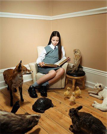 preteen girl pussy - Girl reading story to stuffed animals Stock Photo - Premium Royalty-Free, Code: 6114-06607721