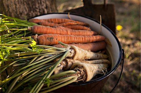 Fresh Vegetables, Croatia, Slavonia, Europe Stock Photo - Premium Royalty-Free, Code: 6115-06732928