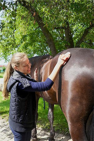 Woman Grooming a Horse, Baden-Wuerttemberg, Germany; Europe Stock Photo - Premium Royalty-Free, Code: 6115-07109602