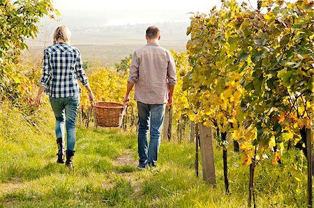 Grape harvest, young couple carrying basket, Slavonia, Croatia Stock Photo - Premium Royalty-Free, Code: 6115-07282908