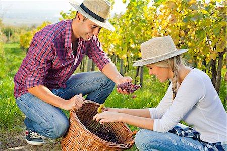 Grape harvest, young couple checking grapes, Slavonia, Croatia Stock Photo - Premium Royalty-Free, Code: 6115-07282913