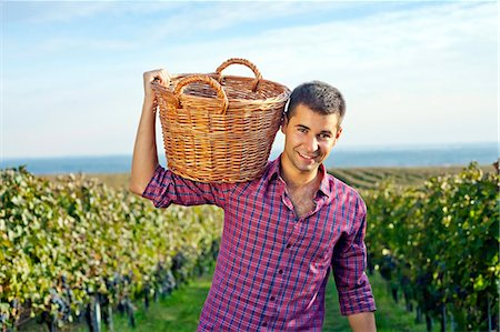 Grape harvest, young man carrying basket with grapes, Slavonia, Croatia Stock Photo - Premium Royalty-Free, Code: 6115-07282918