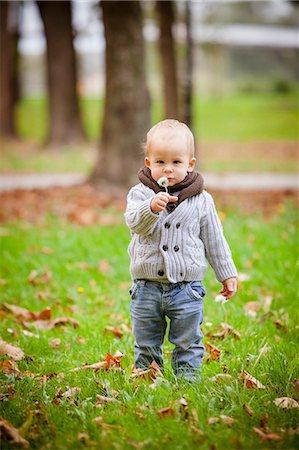 smelly - Toddler holding dandelion seed in autumn, Osijek, Croatia Stock Photo - Premium Royalty-Free, Code: 6115-07539771