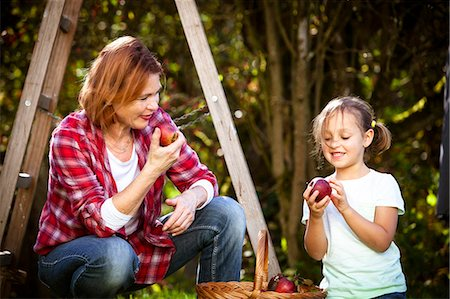 family apple orchard - Grandmother and granddaughter picking apples, Munich, Bavaria, Germany Stock Photo - Premium Royalty-Free, Code: 6115-08100641