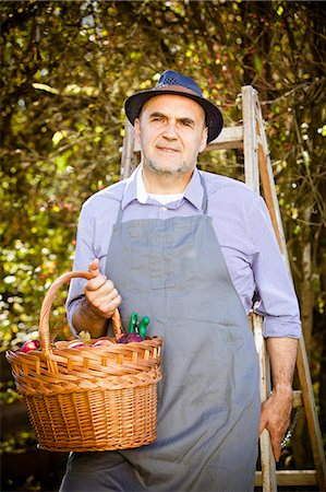 family apple orchard - Senior man holding basket with apples, Munich, Bavaria, Germany Stock Photo - Premium Royalty-Free, Code: 6115-08100644