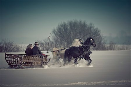 Horse-drawn carriage in the snow, Baranja, Croatia Stock Photo - Premium Royalty-Free, Code: 6115-08101333
