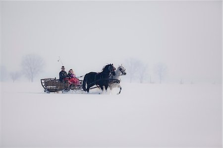 Horse-drawn carriage in the snow, Baranja, Croatia Stock Photo - Premium Royalty-Free, Code: 6115-08101334