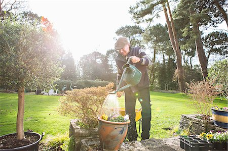 Senior man watering flowers in garden, Bournemouth, County Dorset, UK, Europe Stock Photo - Premium Royalty-Free, Code: 6115-08105143