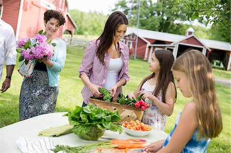 season - Family Party. Five People, Parents And Children Around A Table Preparing A Meal Of Fresh Picked Salads, Fruits And Vegetables Together. Stock Photo - Premium Royalty-Free, Code: 6118-07122182