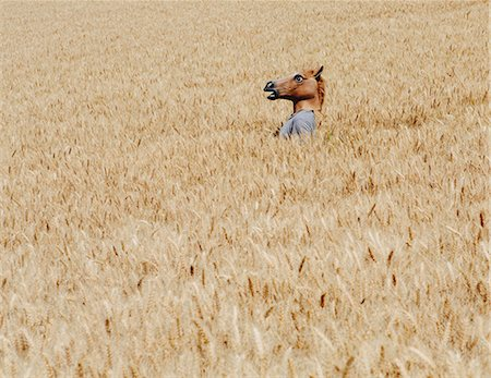 funny looking people - Wheat Fields In Washington. A Person Wearing A Horse Head Animal Mask Emerging Above The Ripe Corn. Stock Photo - Premium Royalty-Free, Code: 6118-07122121
