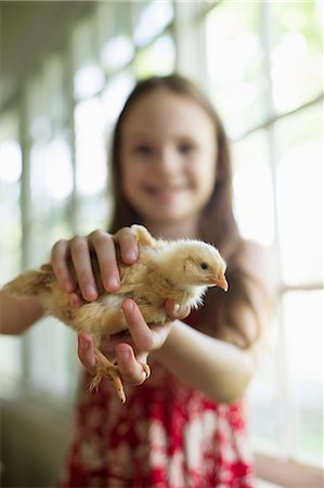 A Young Girl In A Floral Sundress, Holding A Young Chick Carefully In Her Hands. Stock Photo - Premium Royalty-Free, Code: 6118-07122241