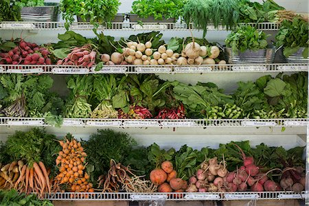 supermarket not people - A farm stand with rows of freshly picked vegetables for sale. Stock Photo - Premium Royalty-Free, Code: 6118-07202986