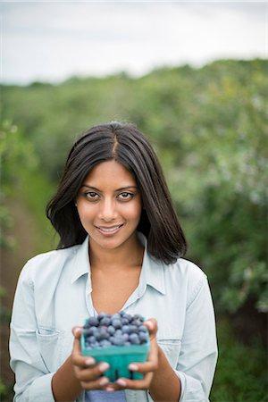 farmhand (female) - Organic Farming. A woman holding a punnet of fresh picked organic blueberries, Cyanococcus. Stock Photo - Premium Royalty-Free, Code: 6118-07203043
