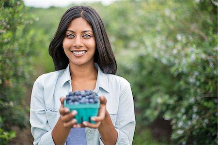 farmhand (female) - Organic Farming. A woman holding a punnet of fresh picked organic blueberries, Cyanococcus. Stock Photo - Premium Royalty-Free, Code: 6118-07203042