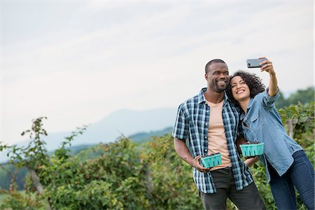 farm phone - Picking blackberry fruits on an organic farm. A couple taking a selfy with a smart phone, and fruit picking. Stock Photo - Premium Royalty-Free, Code: 6118-07203677