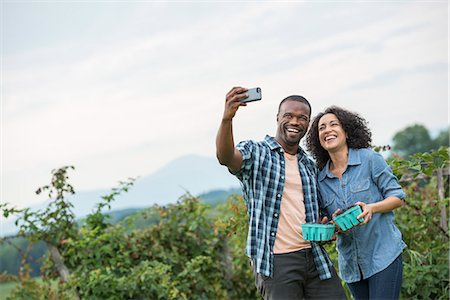 farm phone - Picking blackberry fruits on an organic farm. A couple taking a selfy with a smart phone, and fruit picking. Stock Photo - Premium Royalty-Free, Code: 6118-07203679