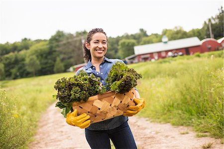 plant (botanical) - Working on an organic farm. A woman holding a basket full of fresh green vegetables, freshly picked. Stock Photo - Premium Royalty-Free, Code: 6118-07203869