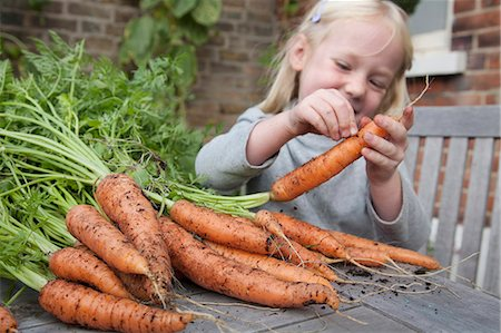 A child inspecting freshly picked carrots with mud on them. Stock Photo - Premium Royalty-Free, Code: 6118-07351145