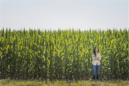A young woman standing with arms folded, in front of a very tall maize, corn crop in the field. Stock Photo - Premium Royalty-Free, Code: 6118-07352104