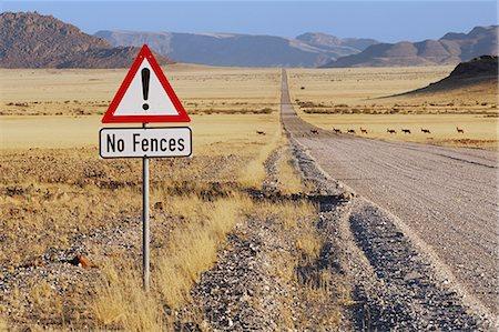 road landscape - Red hartebeest crossing road, Alcelphus buselaphus, NamibRand Nature Reserve, Namibia Stock Photo - Premium Royalty-Free, Code: 6118-07353076