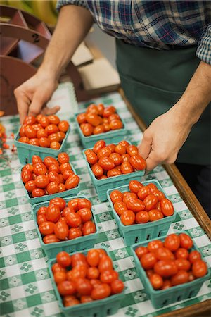 Organic Farmer at Work. A young man arranging a row of punnets of tomatoes. Stock Photo - Premium Royalty-Free, Code: 6118-07353344