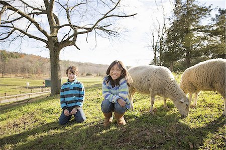 Two children at an animal sanctuary, in a paddock with sheep. Stock Photo - Premium Royalty-Free, Code: 6118-07353471