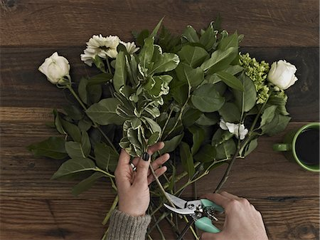 rose patterns - A woman holding secateurs and cutting the base of flower stems for a flower arrangement of white roses and green foliage. Stock Photo - Premium Royalty-Free, Code: 6118-07353505