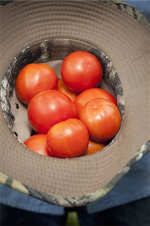 A clutch of fresh ripe red tomatoes, collected in an upturned hat. Stock Photo - Premium Royalty-Free, Code: 6118-07353609
