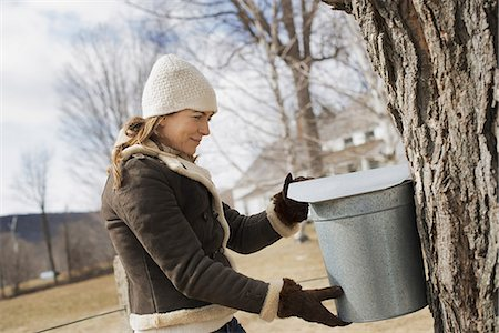 A maple syrup farm. A young woman holding a bucket which is tapping the sap from the tree. Stock Photo - Premium Royalty-Free, Code: 6118-07354203