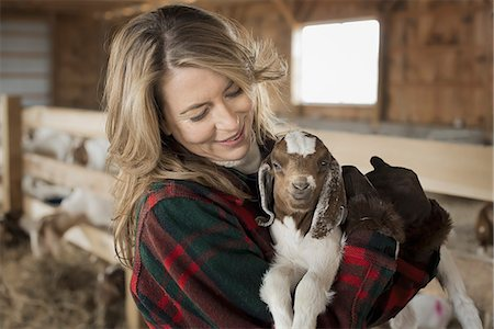 A woman cradling a young goat kid in her arms, on a farm. Stock Photo - Premium Royalty-Free, Code: 6118-07354211