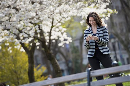 settlement - Outdoors in the city in spring time. New York City park. White blossom on the trees. A woman standing checking her mobile phone. Stock Photo - Premium Royalty-Free, Code: 6118-07354337