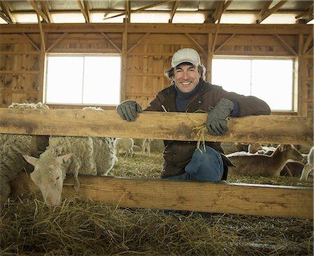 An Organic Farm in Winter in Cold Spring, New York State. A family working caring for the livestock. Farmer and sheep in a pen. Stock Photo - Premium Royalty-Free, Code: 6118-07354440