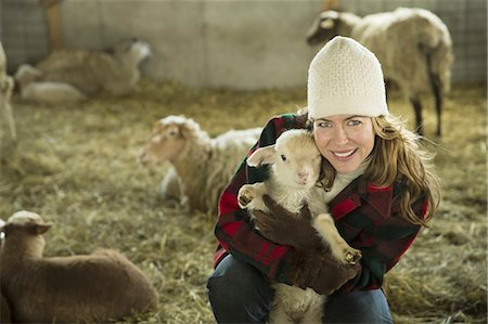 farmhand (female) - An Organic Farm in Winter in Cold Spring, New York State. A family working caring for the livestock. A woman holding a small lamb. Stock Photo - Premium Royalty-Free, Code: 6118-07354441