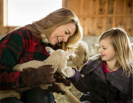 An Organic Farm in Winter in Cold Spring, New York State. Livestock overwintering. A woman and a child stroking a small lamb. Stock Photo - Premium Royalty-Free, Code: 6118-07354442