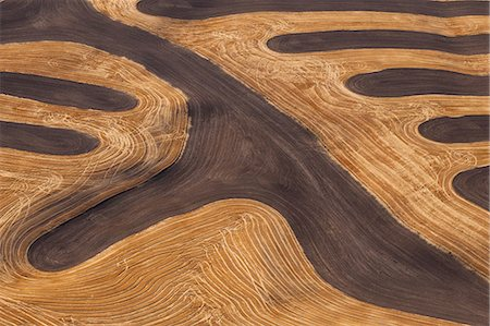 plow - Farmland landscape, with ploughed fields and furrows in Palouse, Washington, USA. An aerial view with natural patterns. Stock Photo - Premium Royalty-Free, Code: 6118-07440482