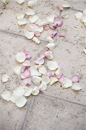 Fresh organic confetti, natural pink dried rose petals on the ground. Traditional wedding custom. Stock Photo - Premium Royalty-Free, Code: 6118-07440769