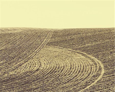 plow - Ploughed earth furrows, patterns on the surface of the soil on farmland near Pullman, Washington, USA Stock Photo - Premium Royalty-Free, Code: 6118-07440901