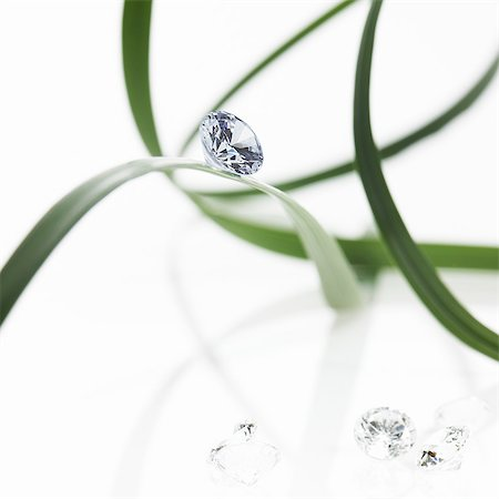 Thin strap green leaves or leaf strands with a small glass bead or gem, with cut facets reflecting the light. Stock Photo - Premium Royalty-Free, Code: 6118-07439833