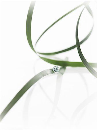 Thin strap green leaves or leaf strands with a small glass bead or gem, with cut facets reflecting the light. Stock Photo - Premium Royalty-Free, Code: 6118-07439831