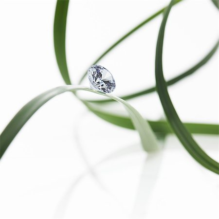 Thin strap green leaves or leaf strands with a small glass bead or gem, with cut facets reflecting the light. Stock Photo - Premium Royalty-Free, Code: 6118-07439832