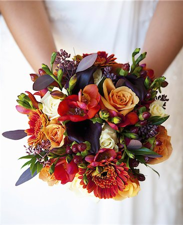 A bride holding a bridal bouquet of colourful red and orange flowers with purple toned leaves. Stock Photo - Premium Royalty-Free, Code: 6118-07521749