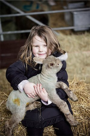 domestic sheep - A girl holding a small new-born lamb. Stock Photo - Premium Royalty-Free, Code: 6118-07731814