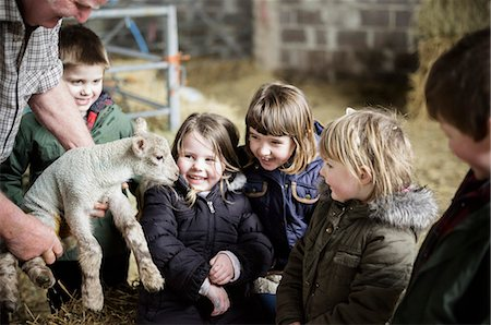 farming (raising livestock) - Children and new-born lambs in a lambing shed. Stock Photo - Premium Royalty-Free, Code: 6118-07731818