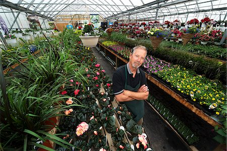 A man standing in a greenhouse with shelves of plants. Stock Photo - Premium Royalty-Free, Code: 6118-08088616