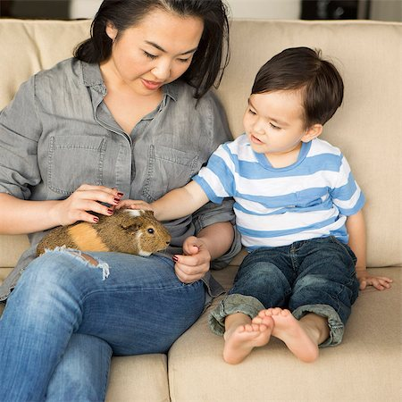 Smiling woman sitting on a sofa, a guinea pig sitting on her lap, her young son stroking the animal. Stock Photo - Premium Royalty-Free, Code: 6118-08202555